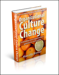 Organizational Culture Change, het boek